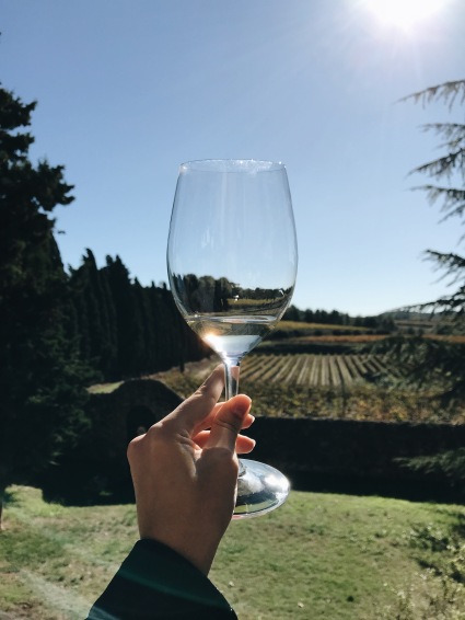 Albet i Noya organic wine